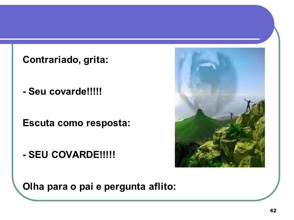 Contrariado, grita: - Seu covarde!!!!. Escuta como resposta: - SEU COVARDE!!!!.
