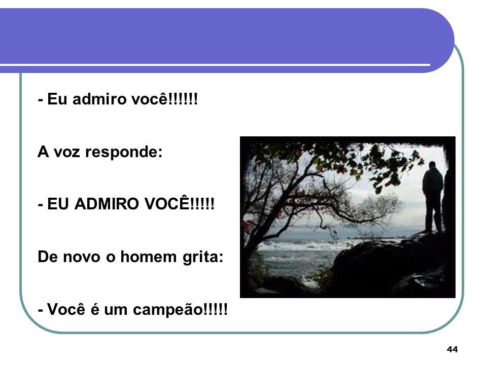 - Eu admiro você!!!!!!A voz responde: - EU ADMIRO VOCÊ!!!!.
