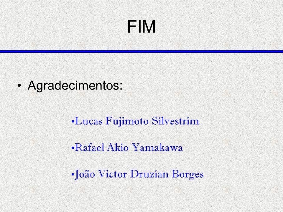 FIM Agradecimentos: Lucas Fujimoto Silvestrim Rafael Akio Yamakawa