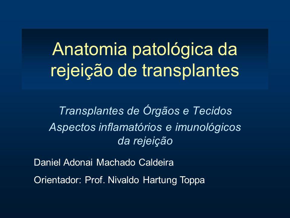 Anatomia patológica da rejeição de transplantes
