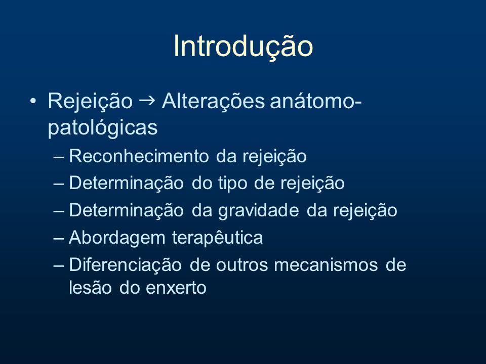 Introdução Rejeição g Alterações anátomo-patológicas