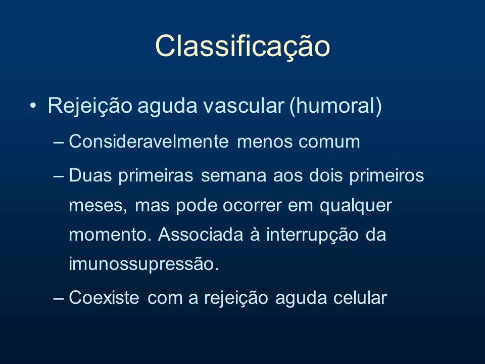 Classificação Rejeição aguda vascular (humoral)