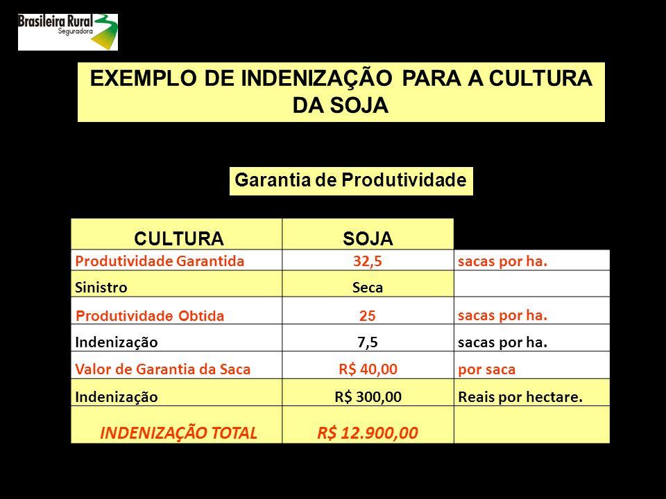 EXEMPLO DE INDENIZAÇÃO PARA A CULTURA DA SOJA