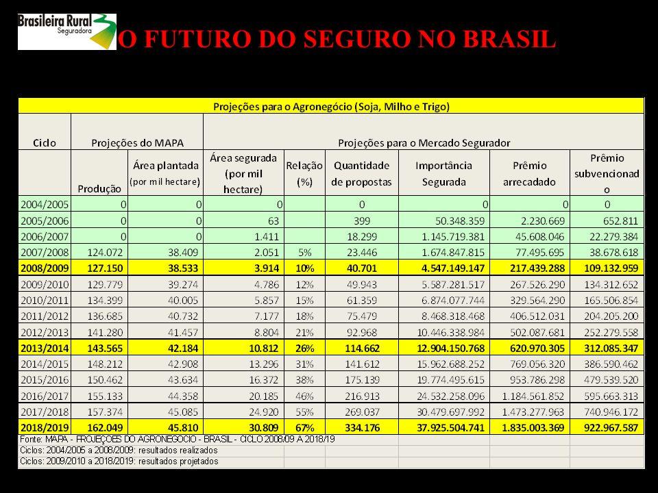 O FUTURO DO SEGURO NO BRASIL