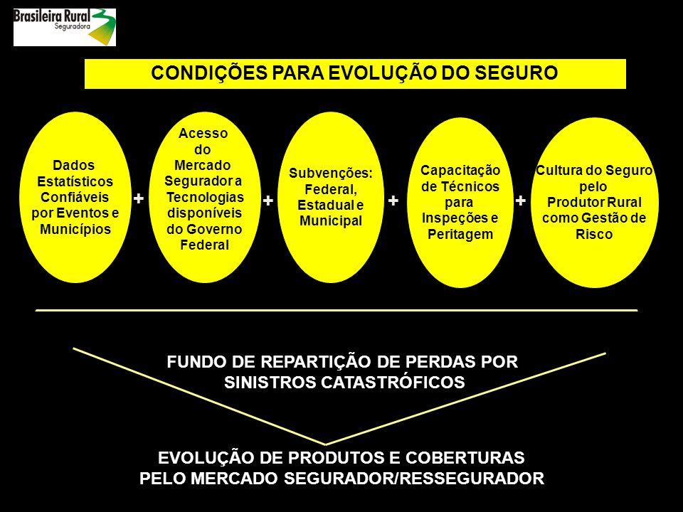 + CONDIÇÕES PARA EVOLUÇÃO DO SEGURO + + + +