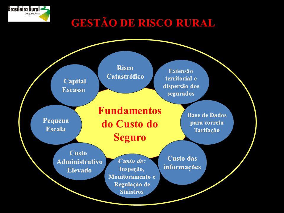 GESTÃO DE RISCO RURAL Fundamentos do Custo do Seguro