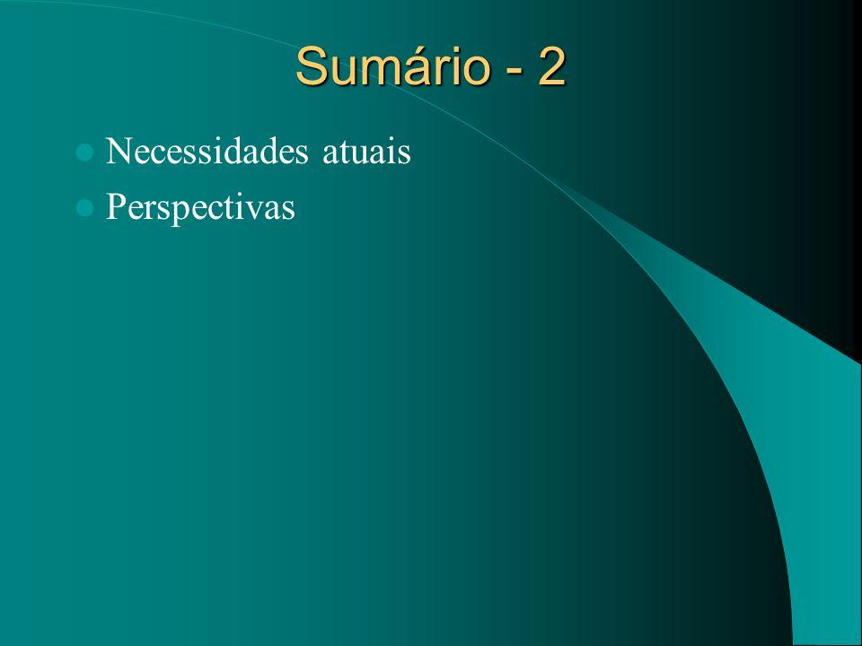 Sumário - 2 Necessidades atuais Perspectivas