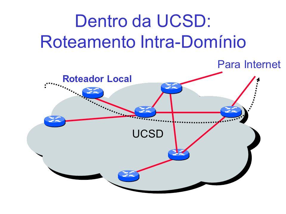 Dentro da UCSD: Roteamento Intra-Domínio