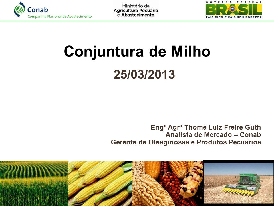 Conjuntura de Milho 25/03/2013 Engº Agrº Thomé Luiz Freire Guth