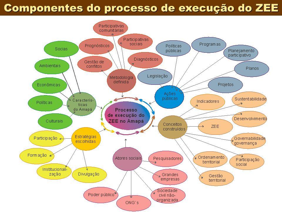 Componentes do processo de execução do ZEE