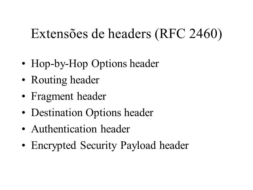 Extensões de headers (RFC 2460)