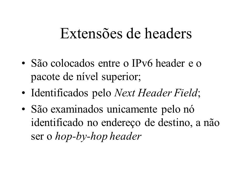 Extensões de headers São colocados entre o IPv6 header e o pacote de nível superior; Identificados pelo Next Header Field;
