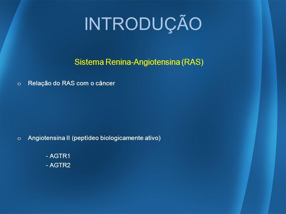 INTRODUÇÃO Sistema Renina-Angiotensina (RAS)