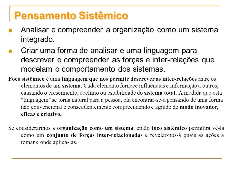 Pensamento Sistêmico Analisar e compreender a organização como um sistema integrado.