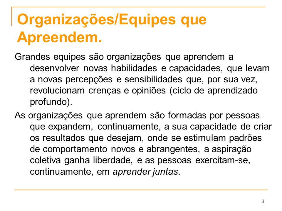 Organizações/Equipes que Apreendem.