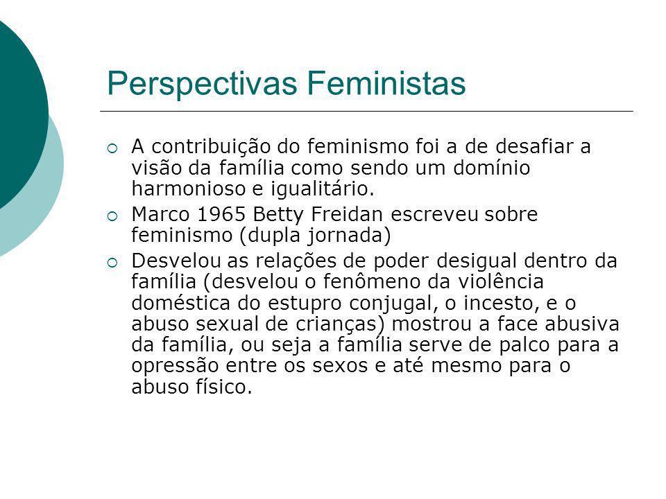 Perspectivas Feministas