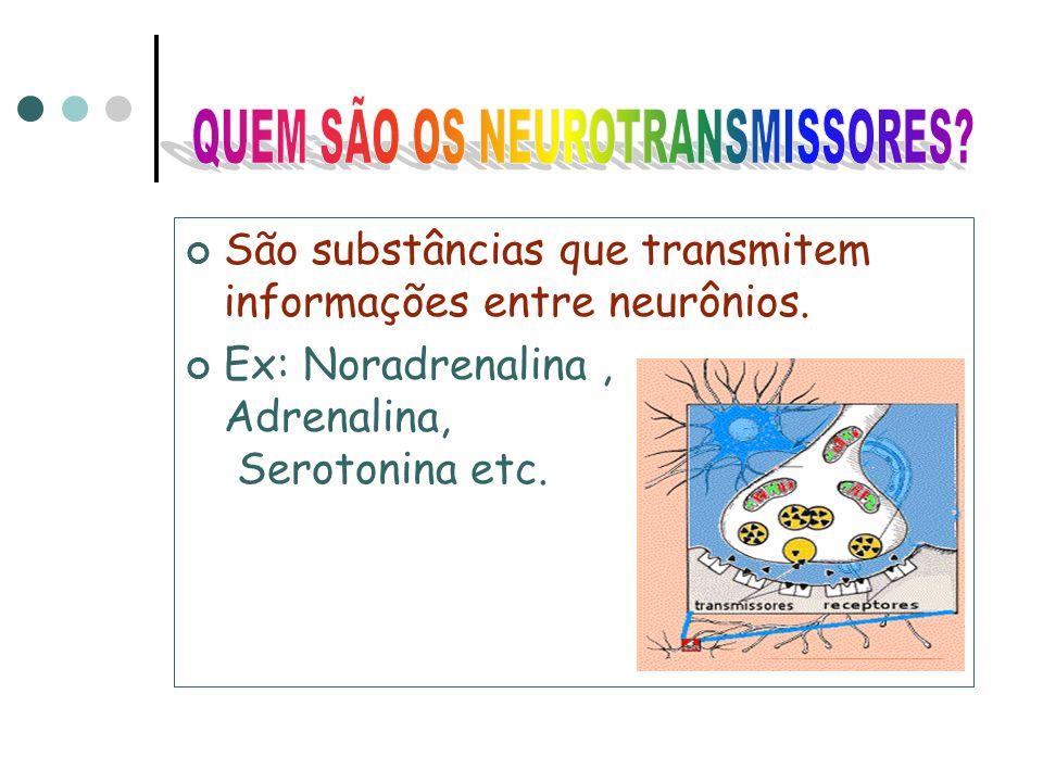 QUEM SÃO OS NEUROTRANSMISSORES