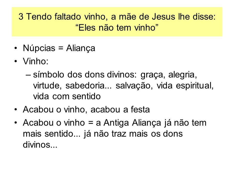 3 Tendo faltado vinho, a mãe de Jesus lhe disse: Eles não tem vinho