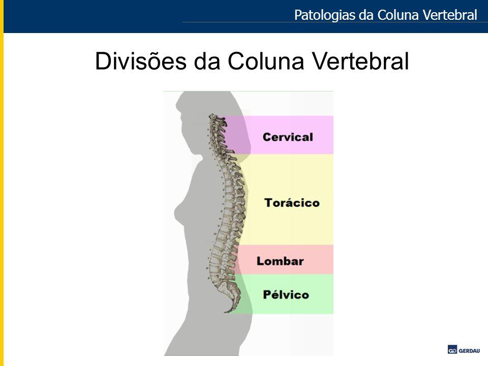 Divisões da Coluna Vertebral