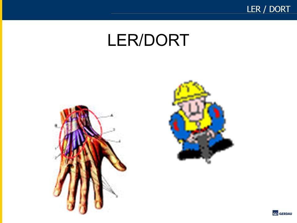 LER / DORT LER/DORT
