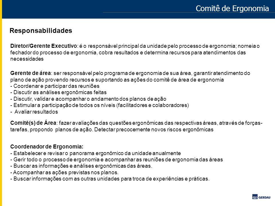 Comitê de Ergonomia Responsabilidades