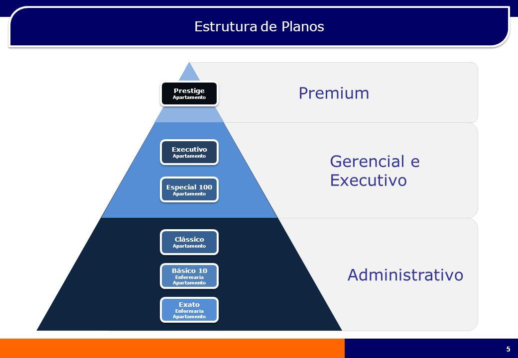 Premium Gerencial e Executivo Administrativo Estrutura de Planos 5