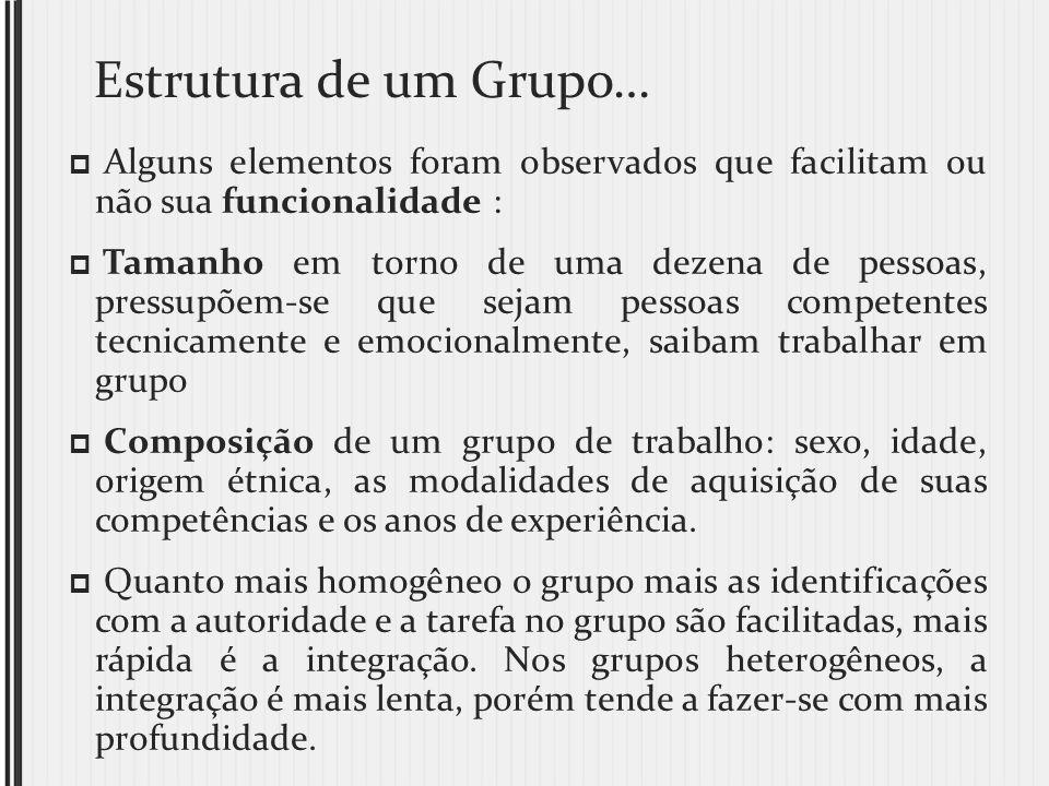 Estrutura de um Grupo… Alguns elementos foram observados que facilitam ou não sua funcionalidade :