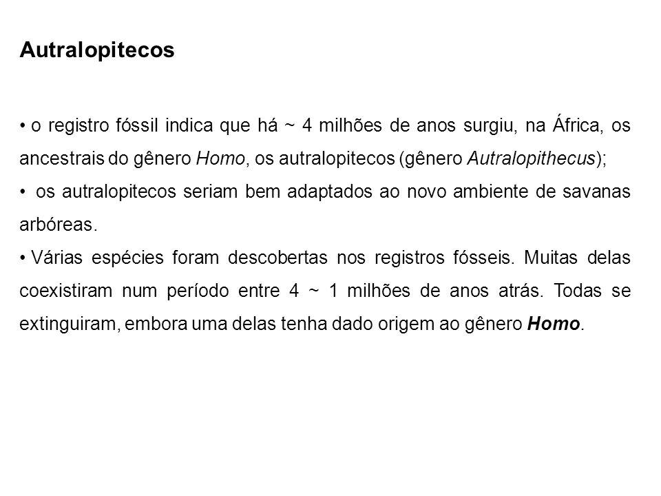 Autralopitecos
