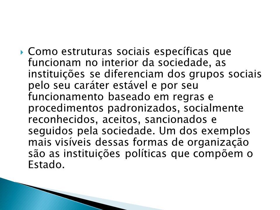 Como estruturas sociais específicas que funcionam no interior da sociedade, as instituições se diferenciam dos grupos sociais pelo seu caráter estável e por seu funcionamento baseado em regras e procedimentos padronizados, socialmente reconhecidos, aceitos, sancionados e seguidos pela sociedade.