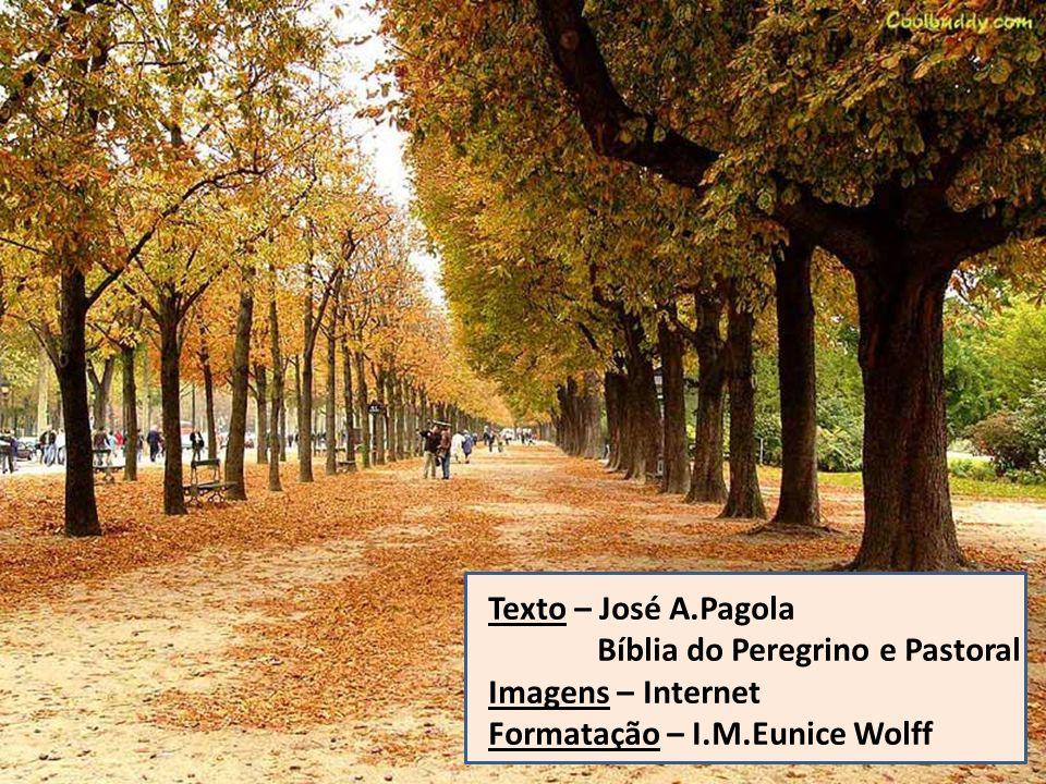 Texto – José A.Pagola Bíblia do Peregrino e Pastoral.
