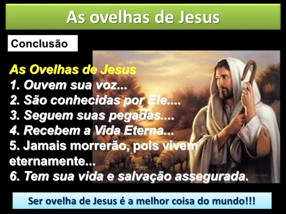 Ser ovelha de Jesus é a melhor coisa do mundo!!!