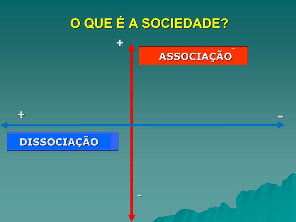 O QUE É A SOCIEDADE - + FORMALIZAÇÃO ASSOCIAÇÃO + FLUIDEZ DA VIDA