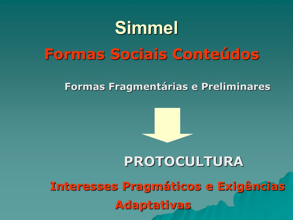 Simmel Formas Sociais Conteúdos PROTOCULTURA