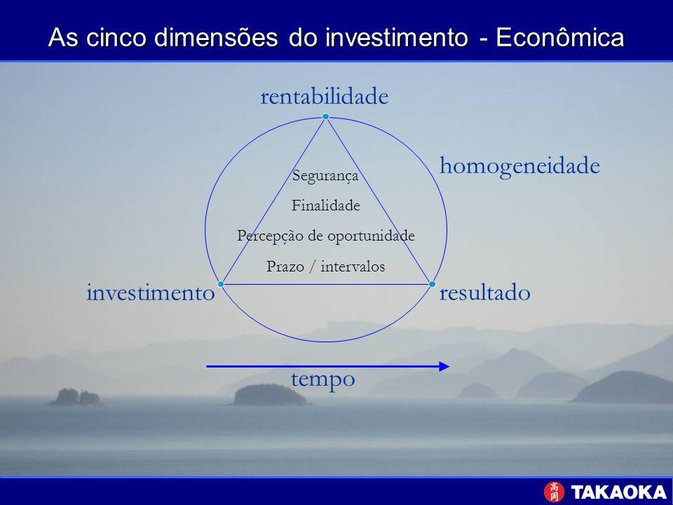 As cinco dimensões do investimento - Econômica