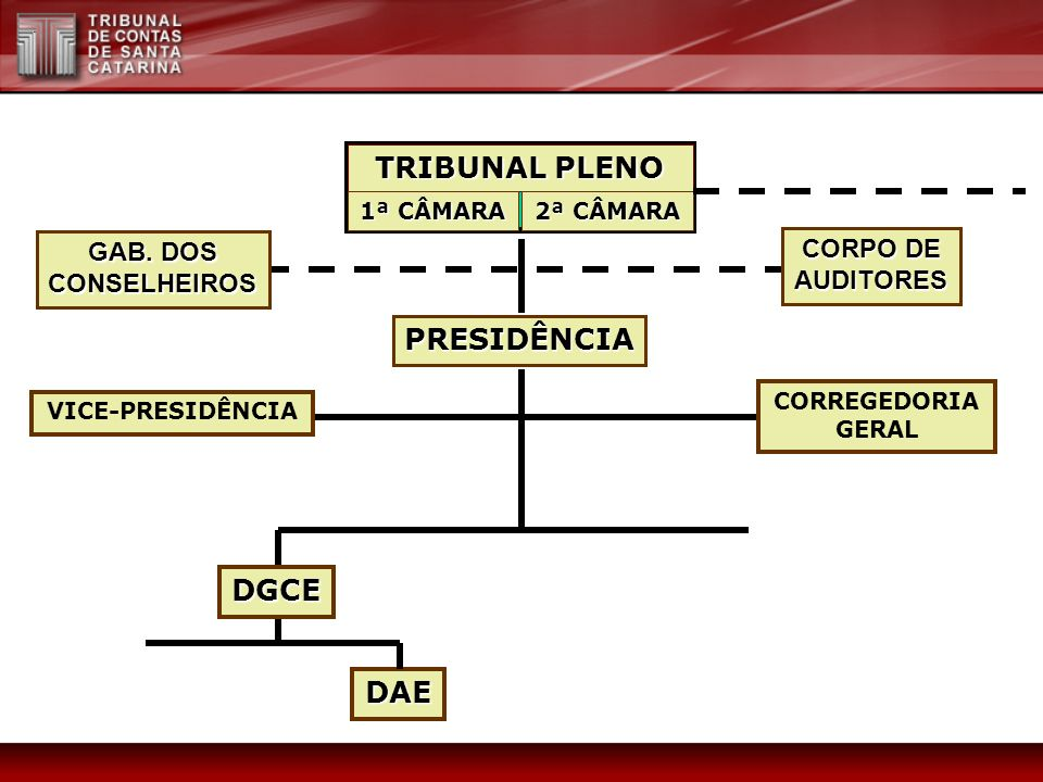 TRIBUNAL PLENO PRESIDÊNCIA DGCE DAE