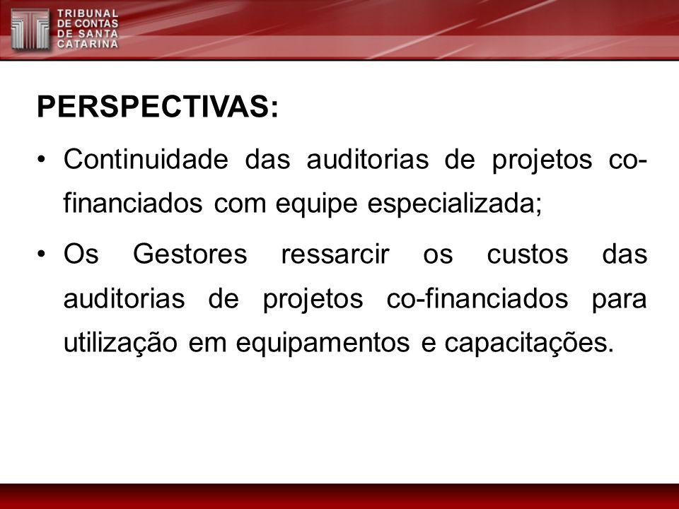 PERSPECTIVAS: Continuidade das auditorias de projetos co-financiados com equipe especializada;