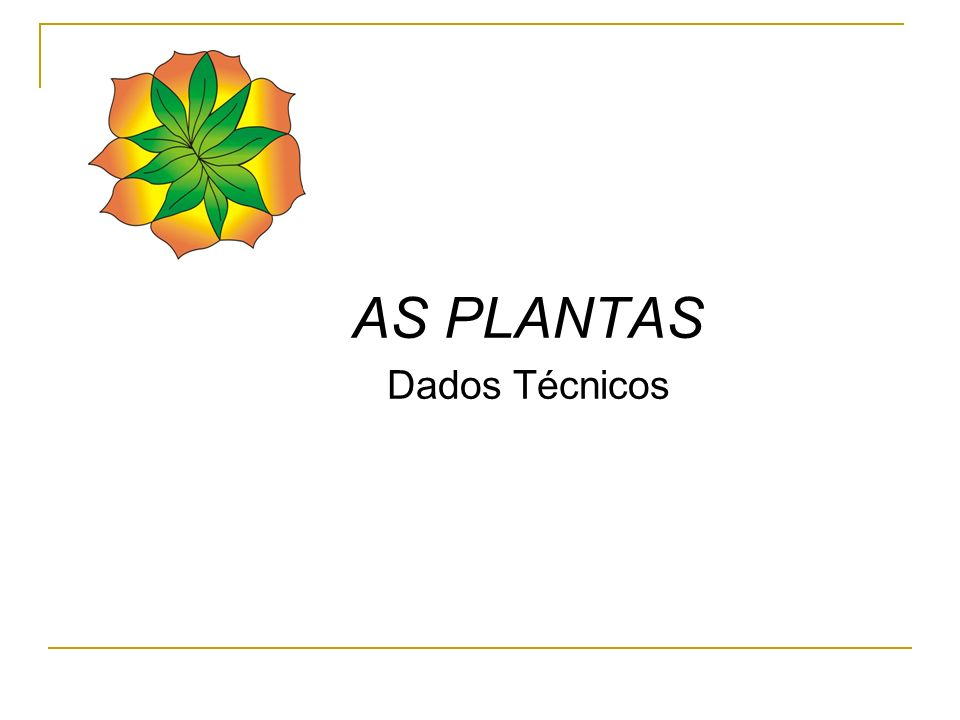 AS PLANTAS Dados Técnicos