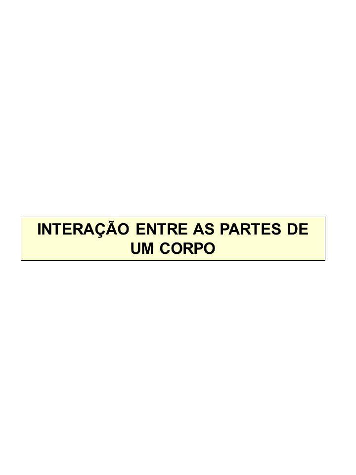 INTERAÇÃO ENTRE AS PARTES DE UM CORPO