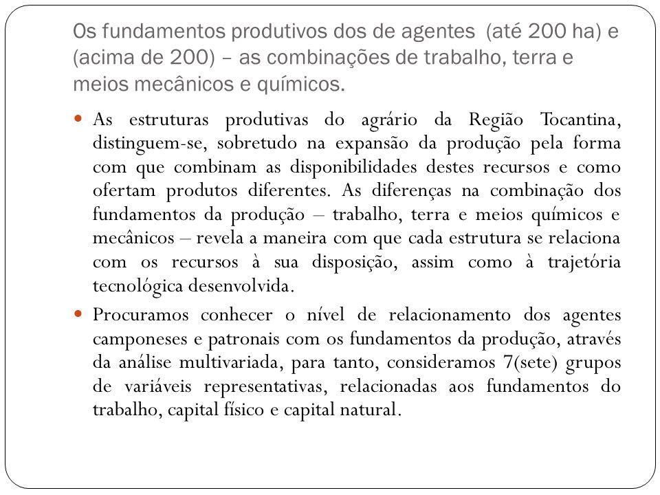 Os fundamentos produtivos dos de agentes (até 200 ha) e (acima de 200) – as combinações de trabalho, terra e meios mecânicos e químicos.