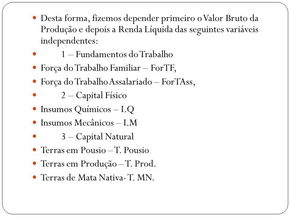 Desta forma, fizemos depender primeiro o Valor Bruto da Produção e depois a Renda Líquida das seguintes variáveis independentes: