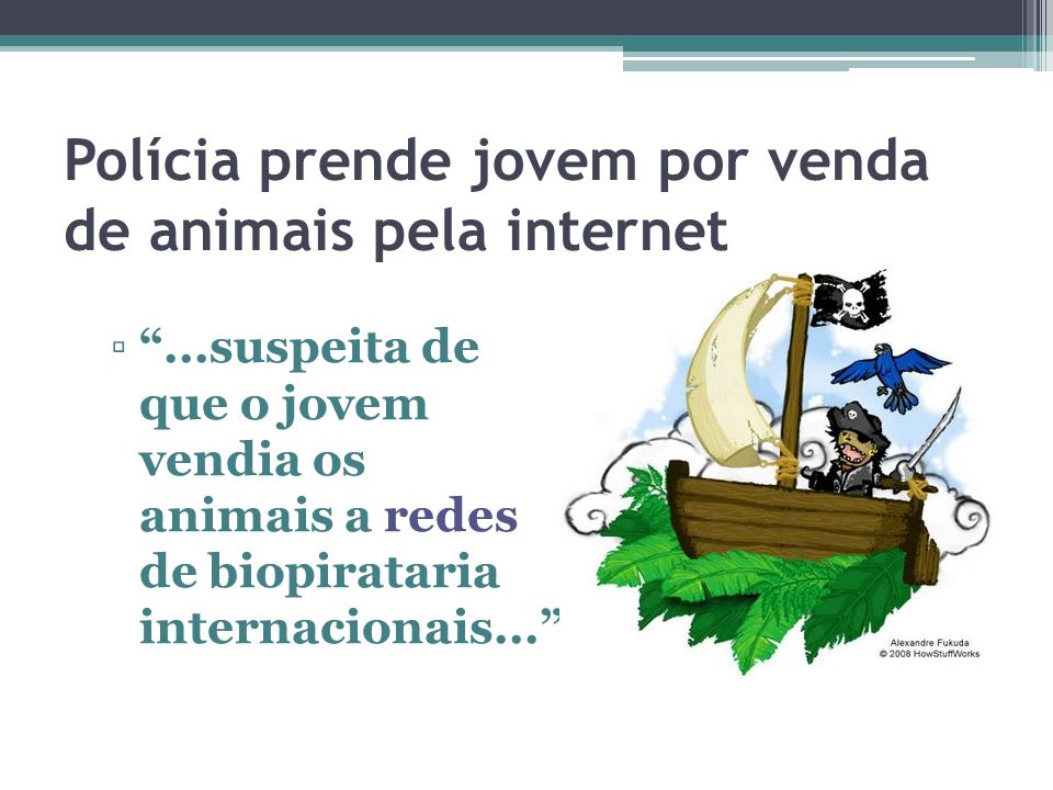 Polícia prende jovem por venda de animais pela internet