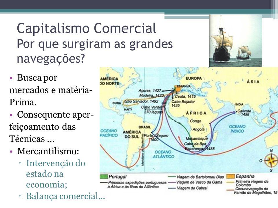 Capitalismo Comercial Por que surgiram as grandes navegações
