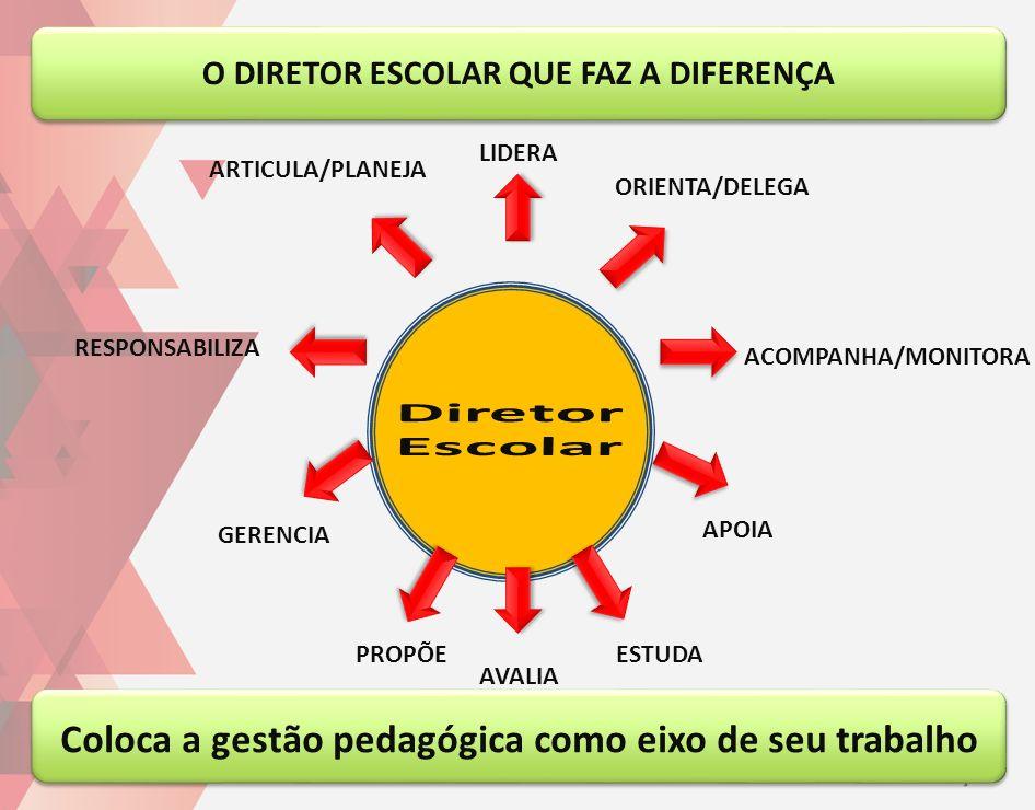 Diretor Escolar Coloca a gestão pedagógica como eixo de seu trabalho