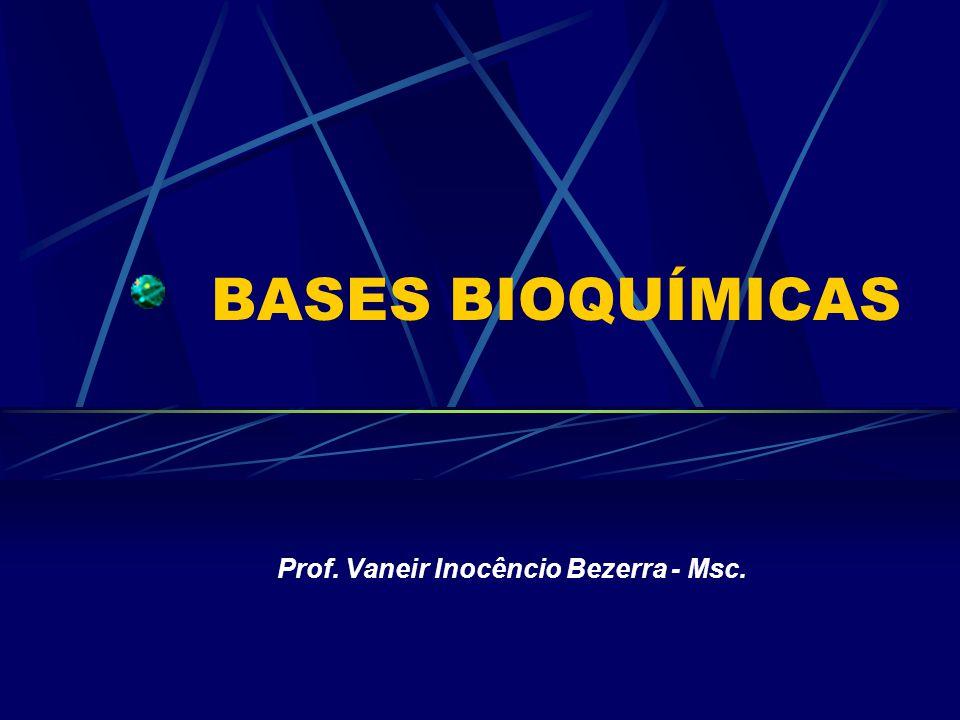 Prof. Vaneir Inocêncio Bezerra - Msc.