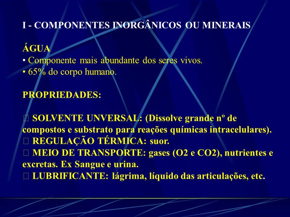 I - COMPONENTES INORGÂNICOS OU MINERAIS