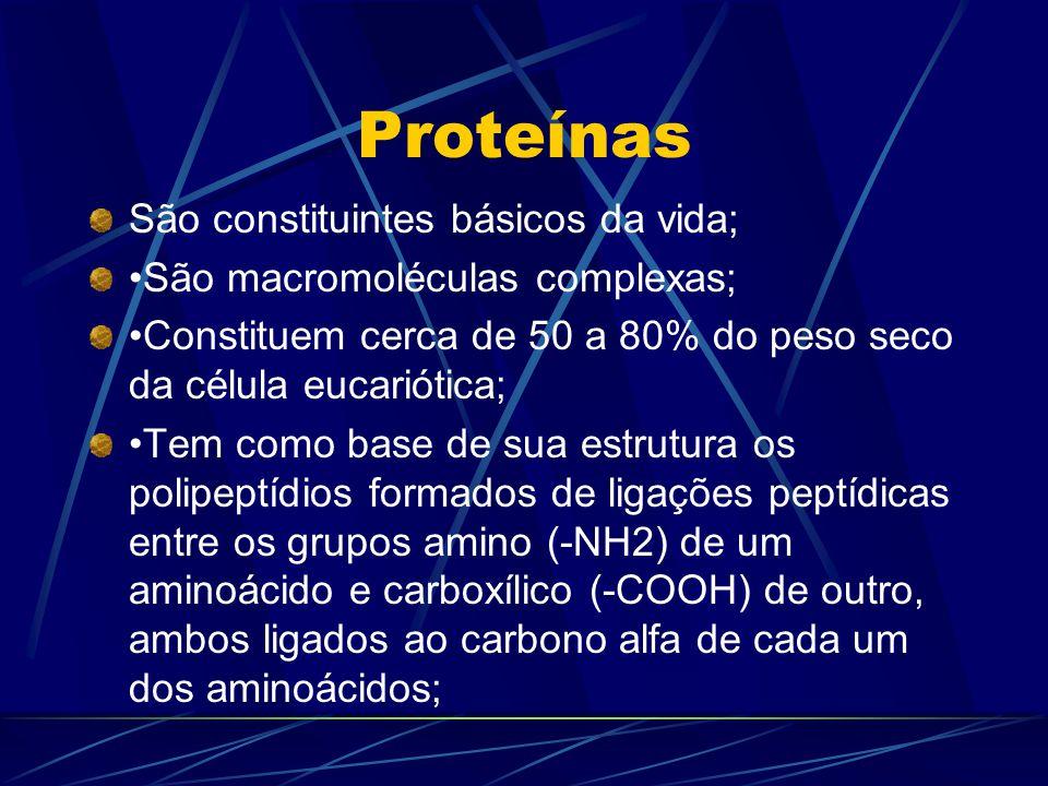 Proteínas São constituintes básicos da vida;