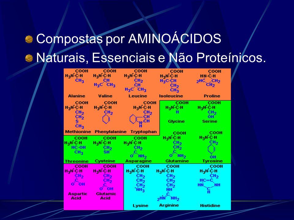 Compostas por AMINOÁCIDOS