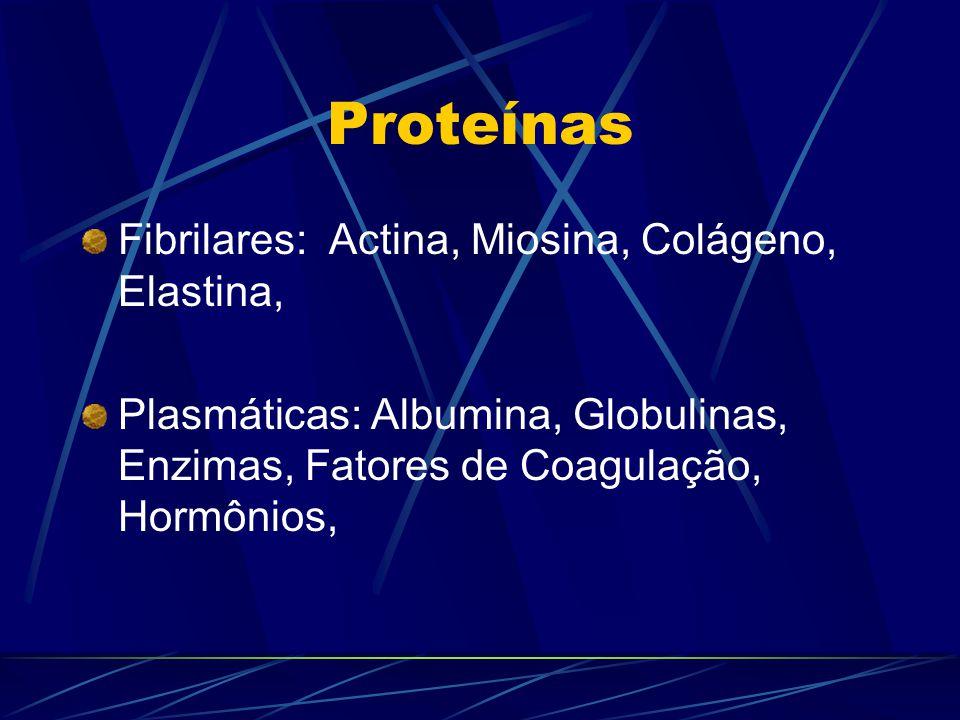 Proteínas Fibrilares: Actina, Miosina, Colágeno, Elastina,