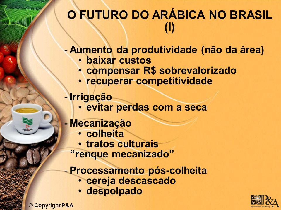 O FUTURO DO ARÁBICA NO BRASIL