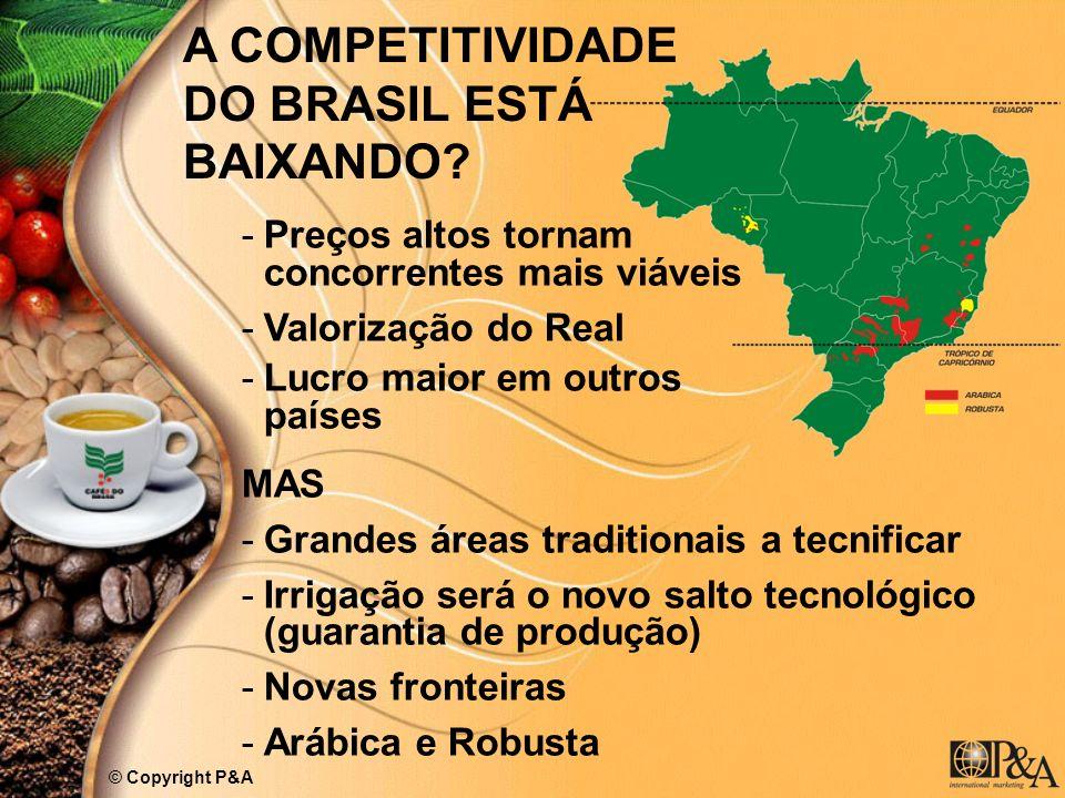 A COMPETITIVIDADE DO BRASIL ESTÁ BAIXANDO